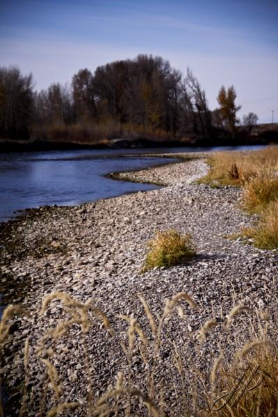JuliePeterson-largegroup-Portraits-Rexburg-Southeast-Idaho_6783 as Smart Object-1