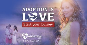 Web Banner Mobil: Adoption USA Campaign