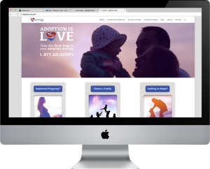 adoptionusa.com