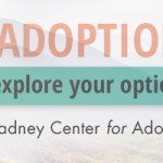 "Web Banner, ""Explore Option,"" Gladney Campaign"
