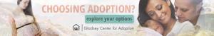 "Web Banner, ""Explore Option,"" Gladney Campaign"